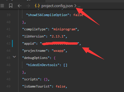 在小程序编辑器运行时编译报错:appid不合法,导致启用不了。